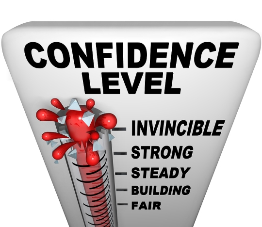LIVING SUCCESS 3D--Confidence-Level