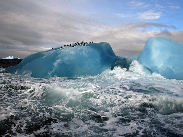 LIVING SUCCESS 3D--BLUE ICEBERG