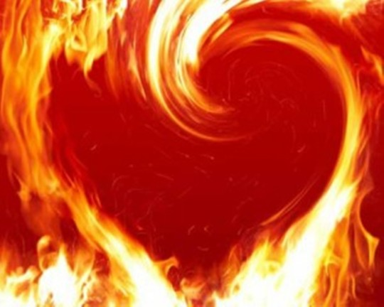 LIVING SUCCESS 3D--Fiery Heart