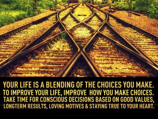 LIVING SUCCESS 3D--CHOICES