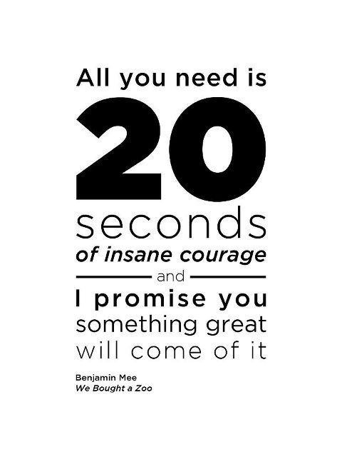 LIVING SUCCESS 3D--INSANE COURAGE