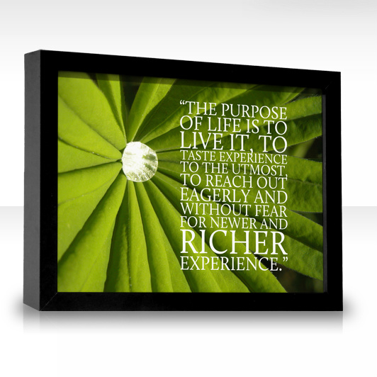 LIVING SUCCESS 3D--PURPOSE