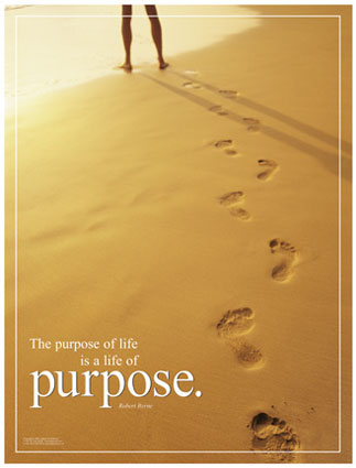 LIVING SUCCESS 3D--LIFE PURPOSE