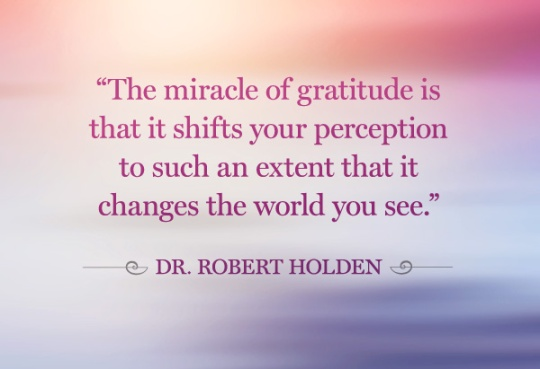LIVING SUCCESS 3D--GRATITUDE