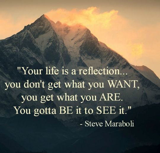 LIVING SUCCESS 3D--REFLECTION